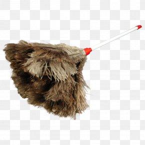 Ostrich - Snout Fur PNG