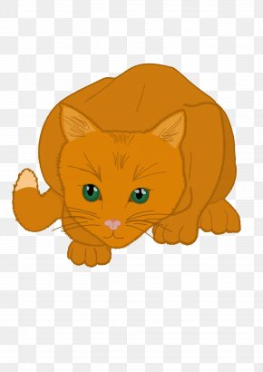Cat - Cat Kitten Whiskers Mammal Carnivora PNG