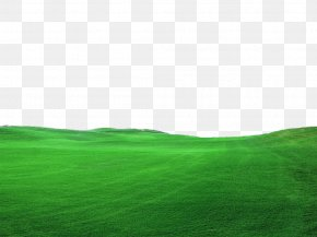 Green Grass Green Decoration Borders - Lawn Green Grassland Landscape Wallpaper PNG