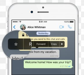 Message Box - WhatsApp Message Mobile Phones Information MSpy PNG