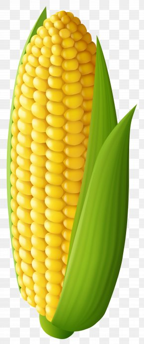 Corn Transparent Clip Art Image - Corn On The Cob Maize Clip Art PNG