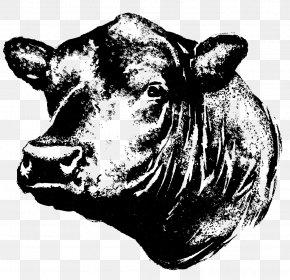 Bull - Angus Cattle Kereman Cattle Beef Cattle Calf Steak PNG