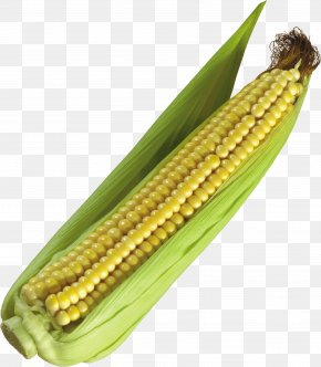 Corn Image - Corn On The Cob Maize Icon PNG
