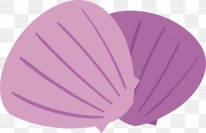Purple Shell Vector - Euclidean Vector PNG