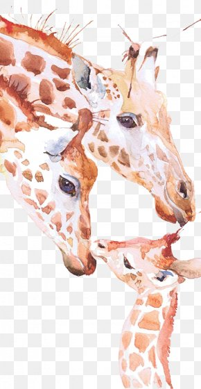 Giraffe - Giraffe Watercolor Painting Drawing Printmaking PNG