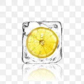 Frozen Lemon Slices - Cocktail Juice Lemonade Ice Cube PNG
