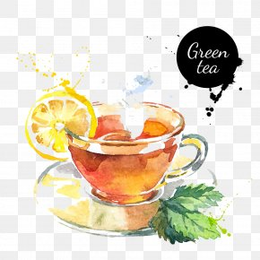 Watercolor Lemon Tea - Green Tea Watercolor Painting Drawing PNG