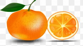 Orange - Shareware Treasure Chest: Clip Art Collection Vector Graphics Openclipart Orange PNG