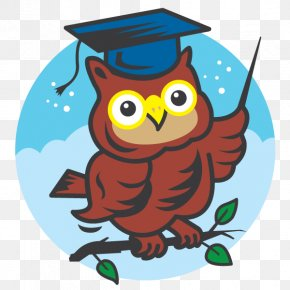 Principal Owl Cliparts - Owl School Head Teacher Clip Art PNG