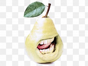Fruit Tree Apple - Fruit Tree PNG