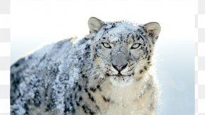 Leopard - Mac OS X Snow Leopard MacBook PNG