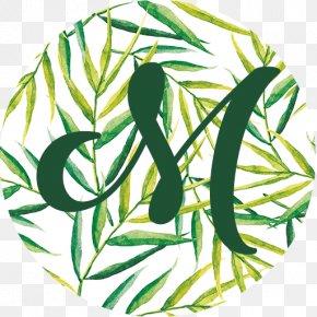 Leaf - Watercolor Painting Leaf PNG