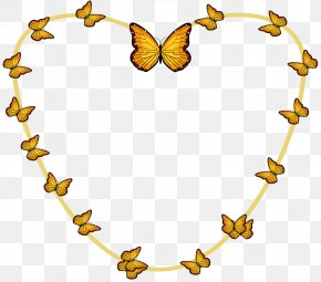 Painted Border Vector Butterfly - Butterfly Euclidean Vector PNG