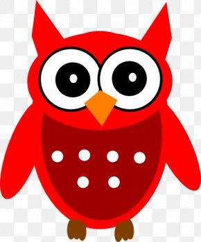 Owl - Owl Bird Clip Art Image Animated Cartoon PNG