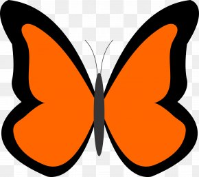 Butterfly Clip Art - Butterfly Drawing Clip Art PNG