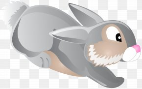Jumping Bunny Cartoon Transparent Clip Art Image - Rabbit Cartoon Clip Art PNG