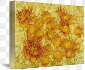 Balcony Plants Decoration 18 0 1 - Still Life Pot Marigold Chrysanthemum PNG