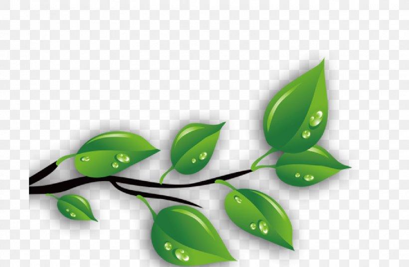 Green Leaves Png 1596x1042px Green Art Drop Gratis Leaf Download Free