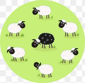 Cartoon Sheep Grazing Group Vector Material - Black Sheep Cartoon Illustration PNG