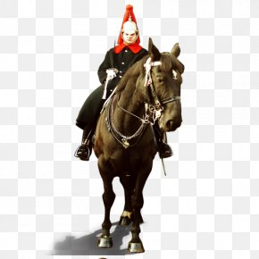 Knight Horse Figure - Horse Middle Ages Crusades Equestrianism PNG