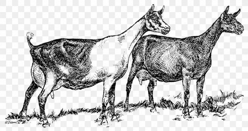 Cattle Alpine Goat Saanen Goat Angora Goat Livestock, PNG, 1280x677px, Cattle, Alpine Goat, Angora Goat, Art, Black And White Download Free