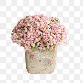 Bouquet - Floral Design Trousers Flower Bouquet Nosegay PNG