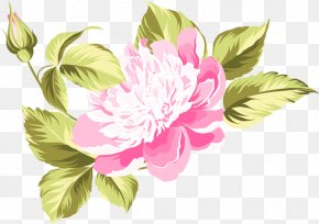 Peony - Peony Watercolor Painting Flower Clip Art PNG
