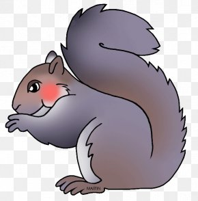 Squirrel - Eastern Gray Squirrel Clip Art PNG