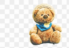 Bear Plush - Teddy Bear PNG