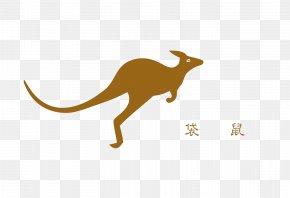 Jumping Kangaroo - Kangaroo Macropodidae Australia Tonghe Residential District Jumping PNG