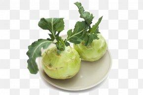 Cyan Kale Head - Kohlrabi Brassica Juncea Chinese Broccoli Vegetable Seed PNG