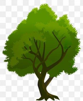 Clip Art Tree - Desktop Wallpaper Clip Art PNG