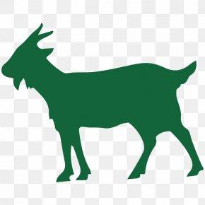 Goat - Goat Sheep Pathogen Evolution Mammal PNG