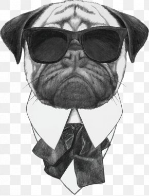 Cool Dog - Pug Stock Photography Sunglasses Stock Illustration PNG