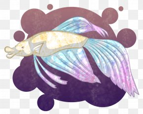 Betta - Shadow Of The Colossus Video Game Art Siamese Fighting Fish PNG