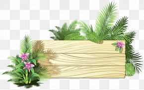 Palm Tree Rectangle - Palm Tree Drawing PNG