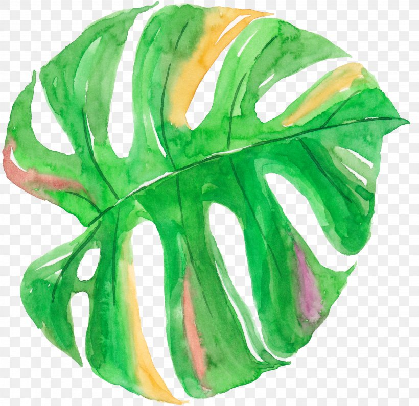Leaf Watercolor Painting Canvas, PNG, 3081x2990px, Leaf, Arecaceae, Art, Canvas, Green Download Free