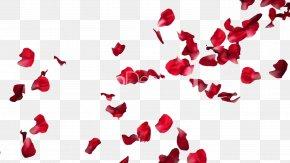 Rose Petals Pic - Rose Petal Flower PNG
