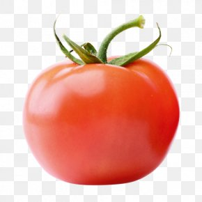 Tomato - Plum Tomato Vegetarian Cuisine Food Vegetable PNG