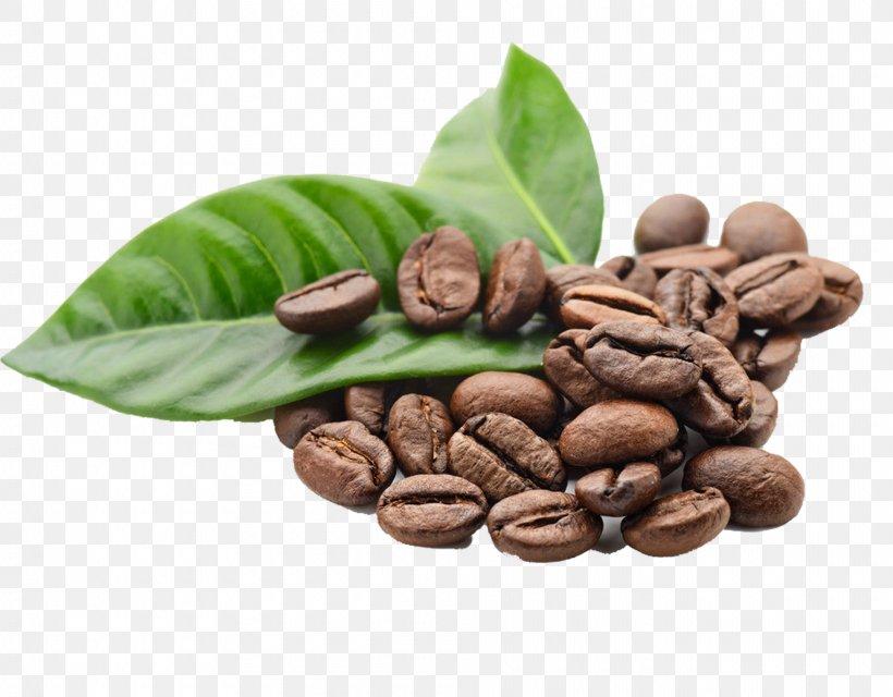 Arabica Coffee Espresso Kona Coffee Coffee Bean, PNG, 1920x1500px ...