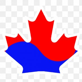 Canada - Flag Of Canada Royalty-free Maple Leaf Stock Illustration PNG