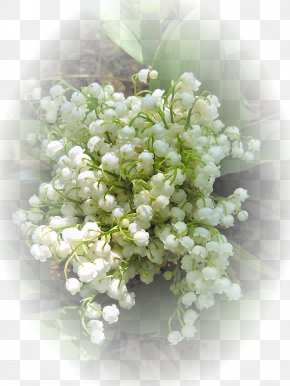 Flower - Floral Design Flower Bouquet 1 May Lily Of The Valley PNG