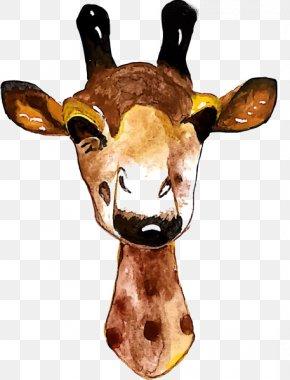 Deer - Deer Giraffe Giant Panda Elk PNG