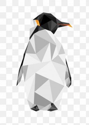 Animal Print - King Penguin Flightless Bird Animal PNG