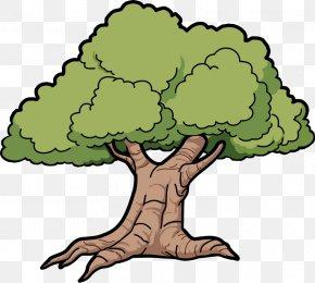 Tree Clip Art - Oak Tree Clip Art PNG