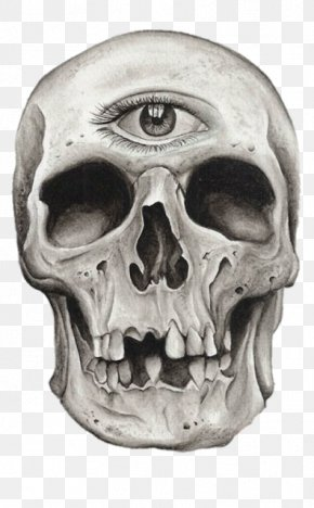 Night Of The Living Dead - Human Skull Symbolism Skeleton Drawing Tattoo PNG