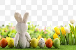 Beautiful Easter Egg - Easter Bunny Easter Egg PNG