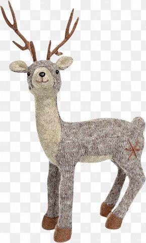 Deer - Reindeer Elk Moose Roe Deer Red Deer PNG