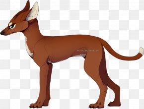 Pharaoh Hound - Pharaoh Hound Dog Breed Italian Greyhound Ibizan Hound Dachshund PNG