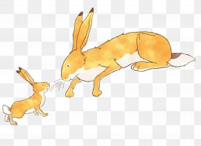 Guess How Much I Love You Domestic Rabbit Clip Art PNG